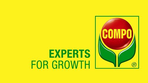 Logo Compo